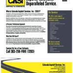 CASI flyer