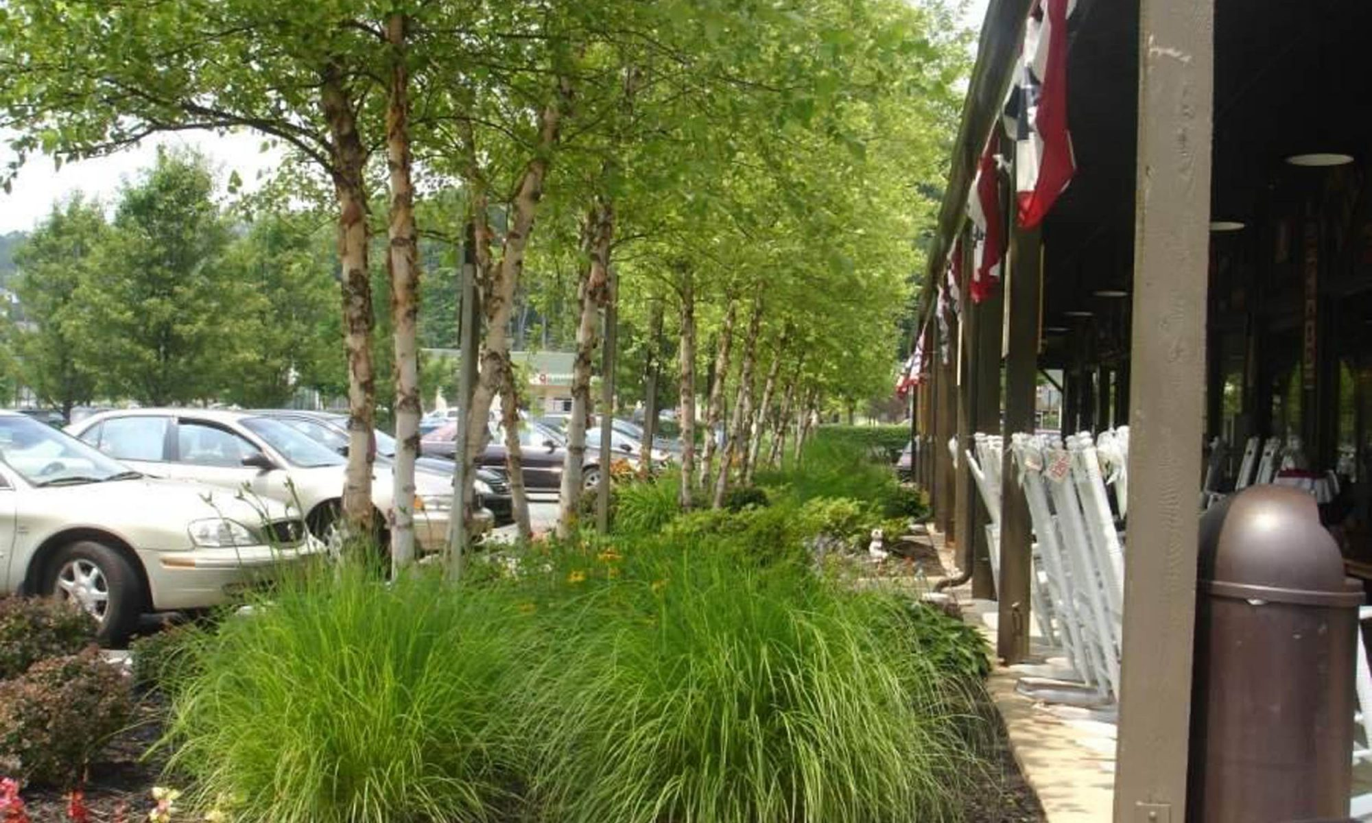 Commercial Landscape Projects
