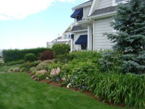 Residential Landscape Design Services by Above Par