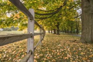 Van Beuren Farms example photo